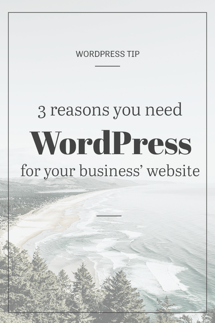 3 reasons you need WordPress for your business site