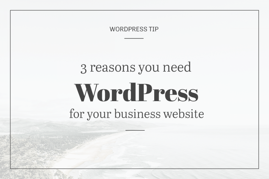 3 reasons your need WordPress for your business site