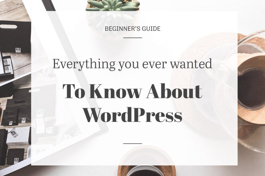 Everything you ever wanted to know about WordPress